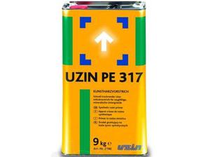 pe_317